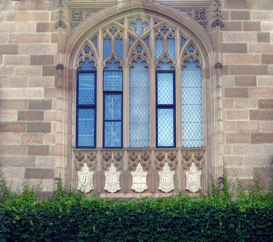 20091102_usyd03592cropped